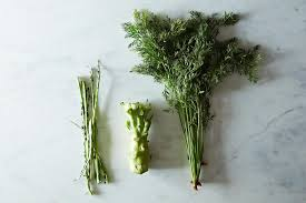 Green Root Vegetable - how to use vegetable stems and roots u2013 cooking with vegetables