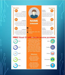 Visual Resume Samples by Visual Cv Samples Best Visual Resumes Professional Visual Resume
