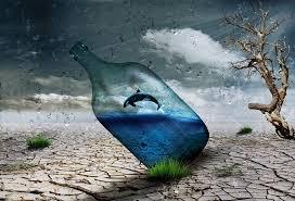 Windart Free Illustration Desert Bottle Dolphin Wind Art Free Image