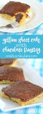 yellow sheet cake with chocolate frosting creations by kara