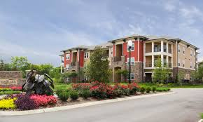 1 bedroom apartments for rent in murfreesboro tn blackman district murfreesboro tn apartments for rent panther