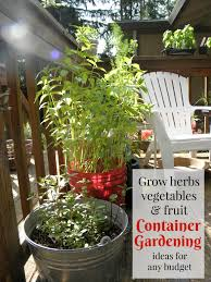 Vegetables For Container Gardening by Ebooks U0026 Printables Preparednessmama