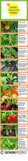 23 Diagrams That Make Gardening by Square Foot Gardening Infographic Square Foot Gardening Square