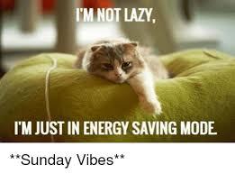Lazy Meme - 25 best memes about im not lazy im not lazy memes
