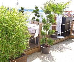 balkon bambus sichtschutz sichtschutz balkon verwirrend auf dekoideen fur ihr zuhause in