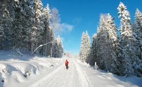 cross country skiing in oslo norway