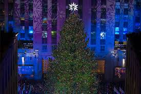 the 2016 rockefeller center tree lights up new york city