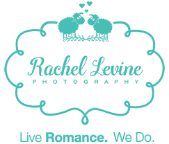 wedding venue taglines san francisco city wedding photography by levine