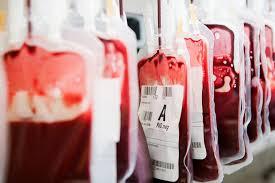 100 pdf blood basics answers heart blood flow google search