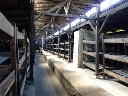 FileAuschwitz Bunk Beds In AuschwitzBirkenaujpg Wikimedia - History of bunk beds