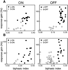 square root of 289 functional asymmetries in on and off ganglion cells of primate