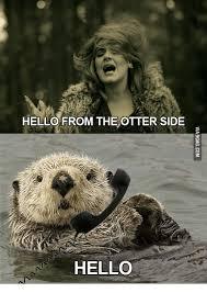 Otter Meme - hello from the otter side hello otter meme on sizzle