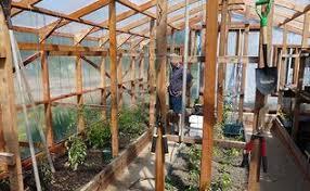 Garden Greenhouse Ideas Make A Critter Proof Garden Greenhouse Hometalk
