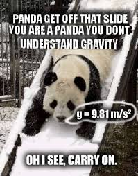 Pick Up Line Panda Meme - cute panda pick up lines the best panda of 2018