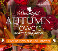 Flower Shops In Washington Dc - best local washington dc and rockville md florist palace florists