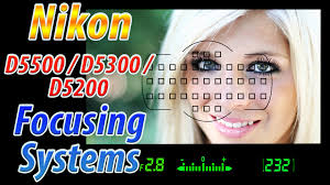 nikon d5500 d5300 d5200 focus square tutorial how to focus