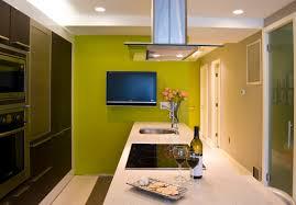 Kitchen Green Walls How To Attain The U201cgreen U201d Kitchen In 8 Steps