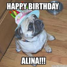 Pug Birthday Meme - image jpg