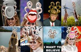 Princess Beatrice Hat Meme - people aren t wearing enough hats just for fun page 3 psych forums