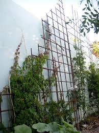 gorgeous winning homemade garden trellis ideas for garden design