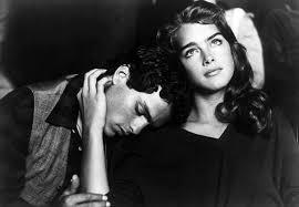 film endless love 1981 cineplex com endless love