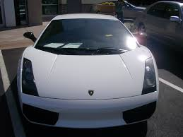 white lamborghini gallardo white lamborghini gallardo superleggera 6 madwhips