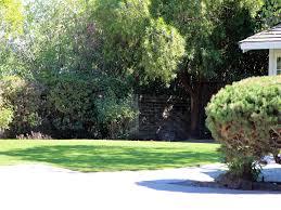 grass turf black canyon city arizona garden ideas front yard