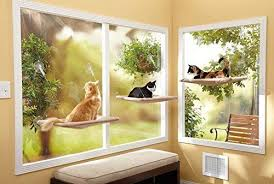 removable durable window mounted cat bed sunny view pet seat perch