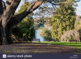 Botanical Gardens Melbourne The Royal Botanic Garden Melbourne Australia Stock Photo