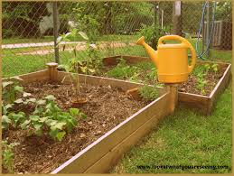 What Is An Urban Garden Look At What You Are Seeing June 2016