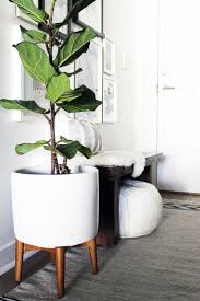 if you re looking for a stylish yet minimalist plant stand this do