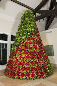 new bromeliad tree at bok tower gardens bok tower gardens