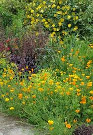 gardening ideas from the weatherstaff plantingplanner team u2013 page