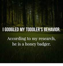 Honey Badger Memes - googled my toddler s behavior according to my research he is a honey