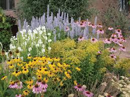 100 small garden plants ideas make a shady rock garden hgtv