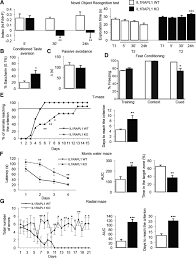 the x linked intellectual disability protein il1rapl1 regulates