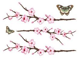 small cherry blossom cherry blossom butterflies skyn