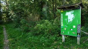 Weingarten Baden Weingartener Moor U2013 Wikipedia