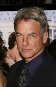 whats the gibbs haircut about in ncis 564 best ncis images on pinterest mark harmon michael weatherly