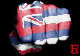 Image Of Hawaiian Flag Homegrown Hawaiian Clothing U2013 Home Grown Hawaiian