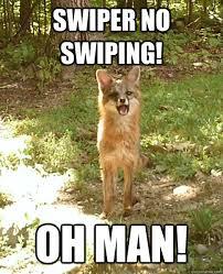 Swiper The Fox Meme - swiper no swiping oh man genuinely surprised fox quickmeme