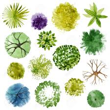 watercolor trees top view easy to use in your landscape design