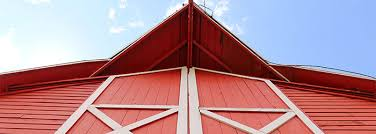 Comedy Barn In Pigeon Forge Tennessee Amazing Animals New Show At The Comedy Barn