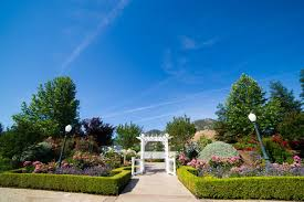Wedding Venues In Fresno Ca So Your Getting Married How To Choose The Perfect Vendor U2013 Fresno