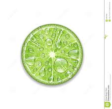 martini clipart no background lime with transparent droplets stock vector image 56897650