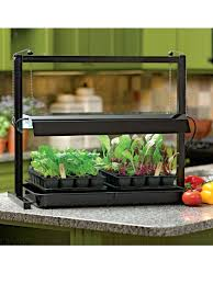 small grow lights and tabletop garden starter kit