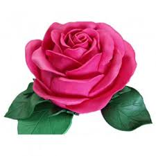 Flowers For Mom Flowers For Mom We Deliver Gifts Lebanon