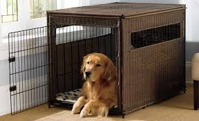 dog crate dog crate cover puppies pinterest crate 10 best dog crates carriers and kennels of 2017 pet territory