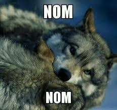 Nom Nom Nom Meme - nom nom wolf by shewolf1d on deviantart