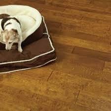timborana shorts hardwood flooring fantastic sale price of only